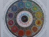 sheila-waters-roundel-of-the-seasons